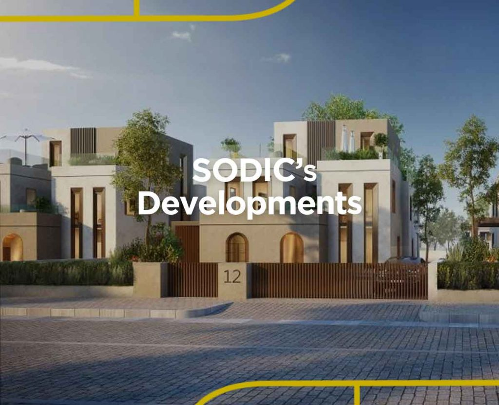 Sodic Projects