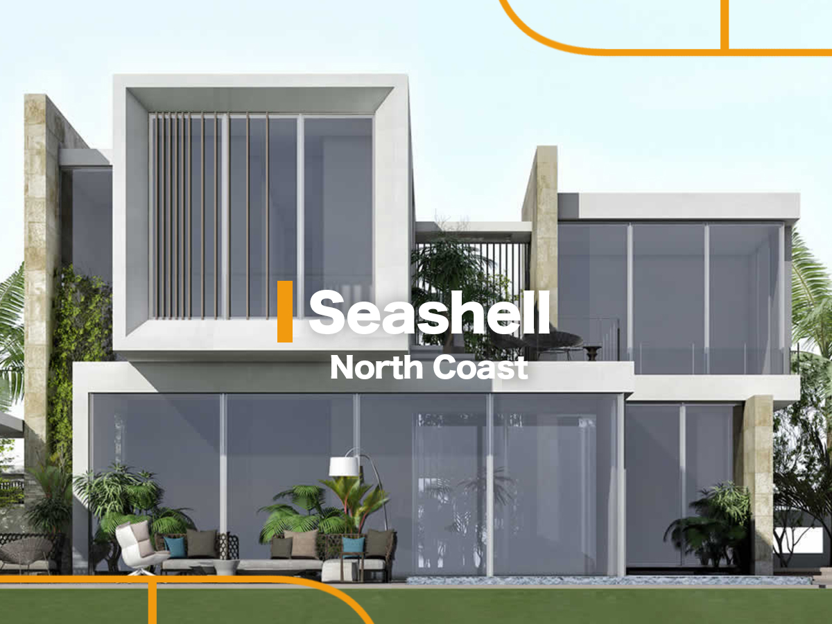 Seashell by NEWGIZA-featured-1