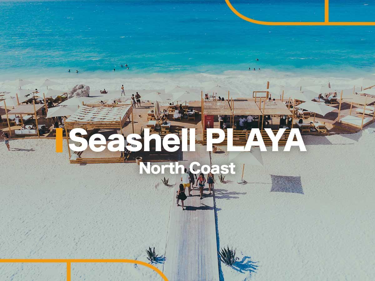 Seashell PLAYA by NEWGIZA-featured-1