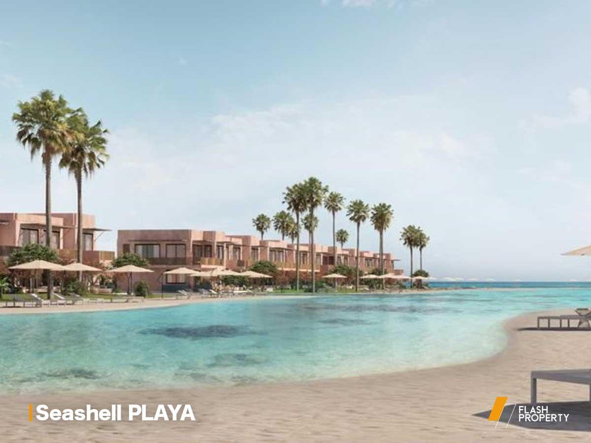 Seashell PLAYA by NEWGIZA-featured-3