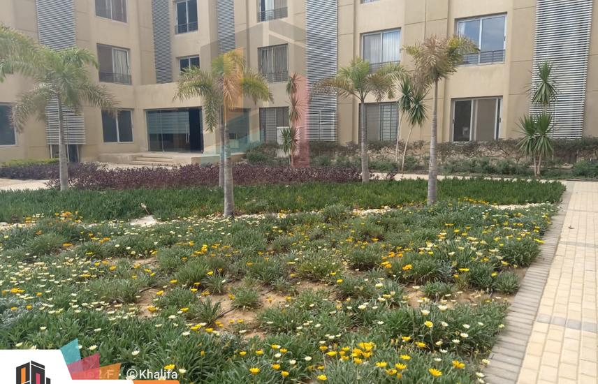 Hot Offer Apartment|153 m| For Rent At Palm Parks