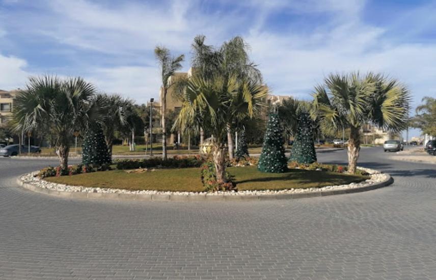 Apartment For Rent Palm Parks Palm Hill