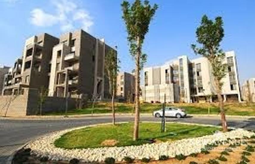 penthouse vgk delivered lowest price !!