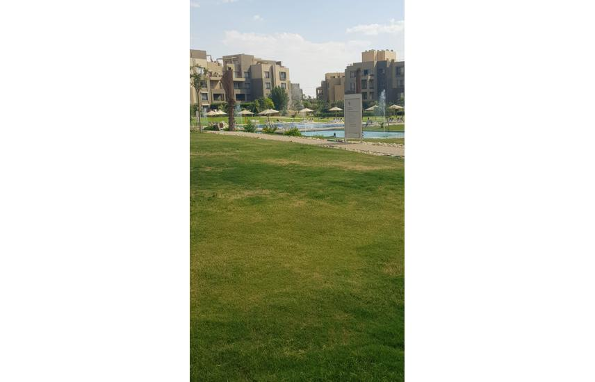 Apartment ground on the swimming pool - Palm Parks